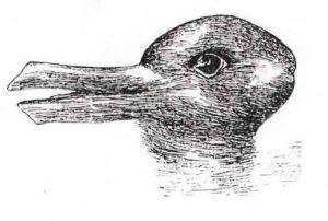 tekening van eend of konijn. welk dier is het?